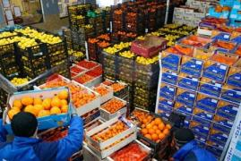 """""""BF Company"""" Wholesale trade in fruits and vegetables"""