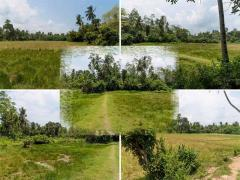 Land for sale in Sri Lanka