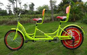 Selling unusual bikes for rentals, rest houses, parks